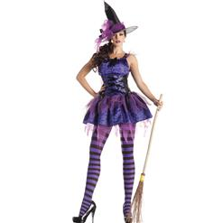 Sexy Purple Classic Starry Night Witch Costume, Broomstick Witch Costume, Sexy Adult Witch Costume, #N9389